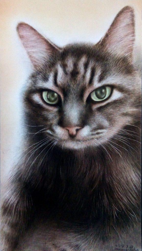 色鉛筆で描いた猫の絵